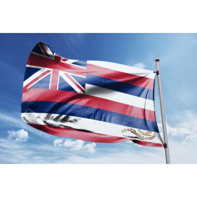 Hawaii zászlaja 40x60cm