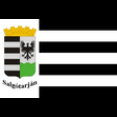Salgótarján város zászlaja 40x60cm