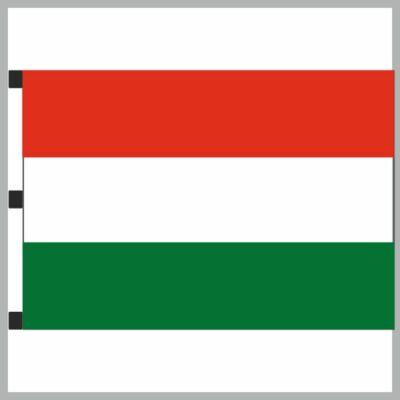 Nemzeti zászló 150x300cm